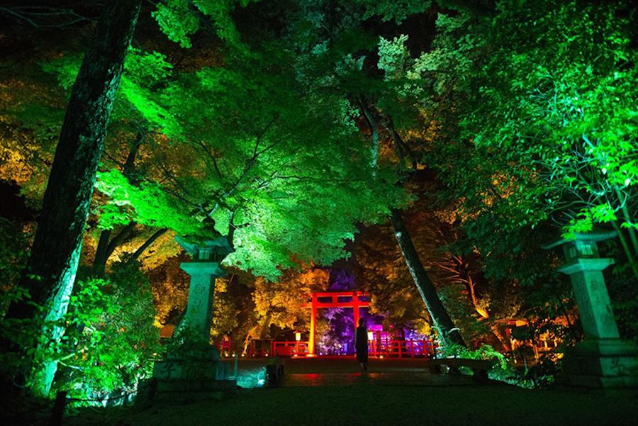 沉浸在日本京都古老的神社魔法世界,让人为之惊叹!