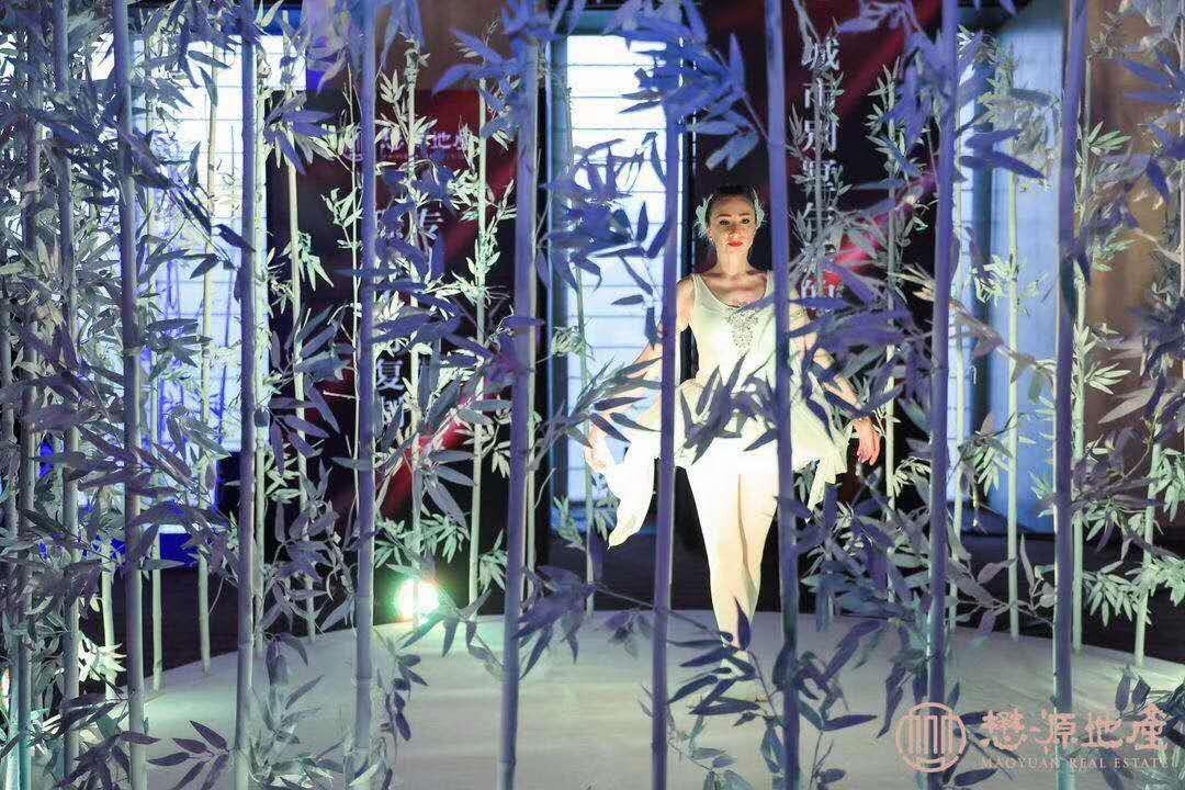 演艺演出-乐器演奏-主持礼仪(北京专业演艺服务商)