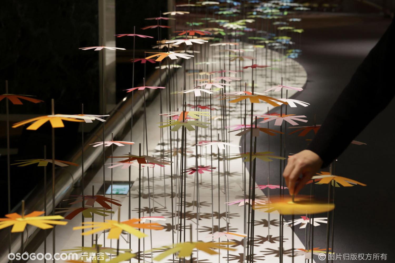 为什么Emmanuelle Moureaux将色彩用作空间原