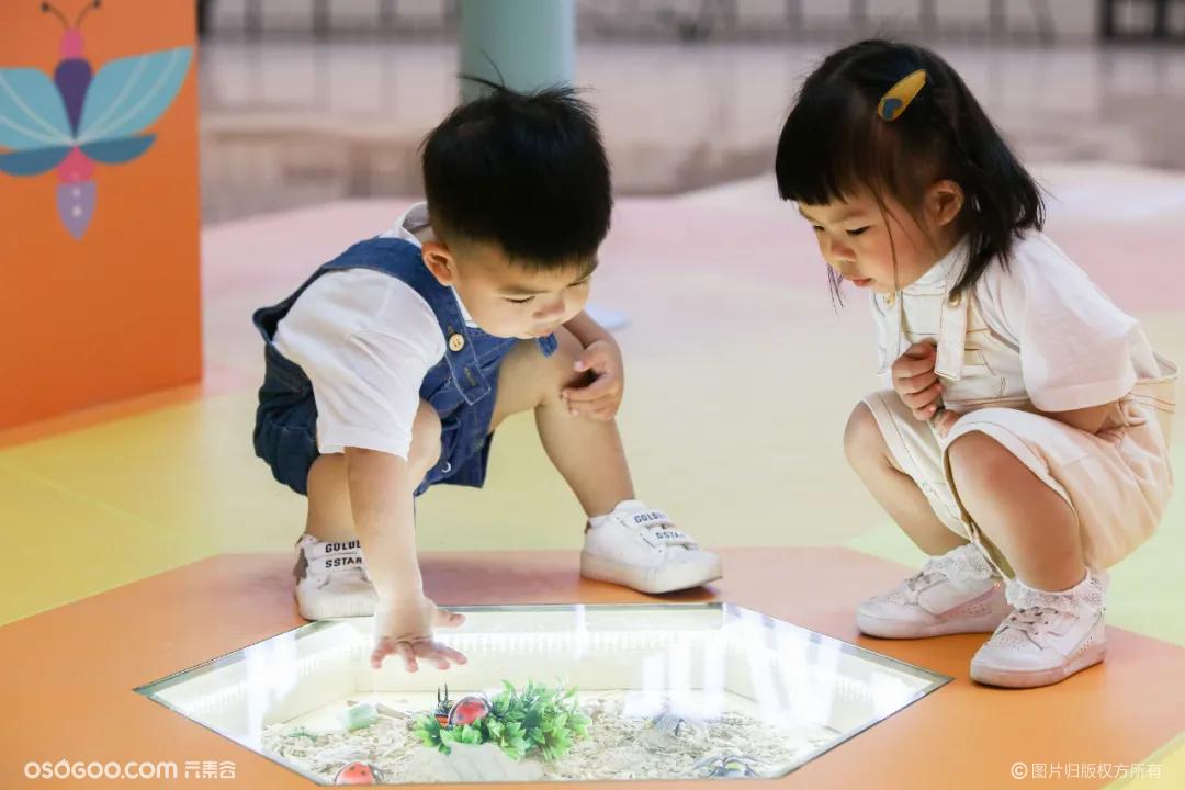 昆虫探索乐园-走进童话里昆虫世界
