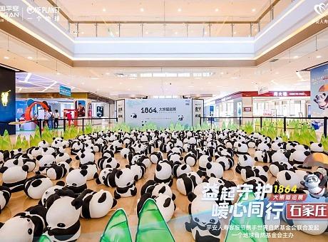 1864大熊猫巡展·石家庄站