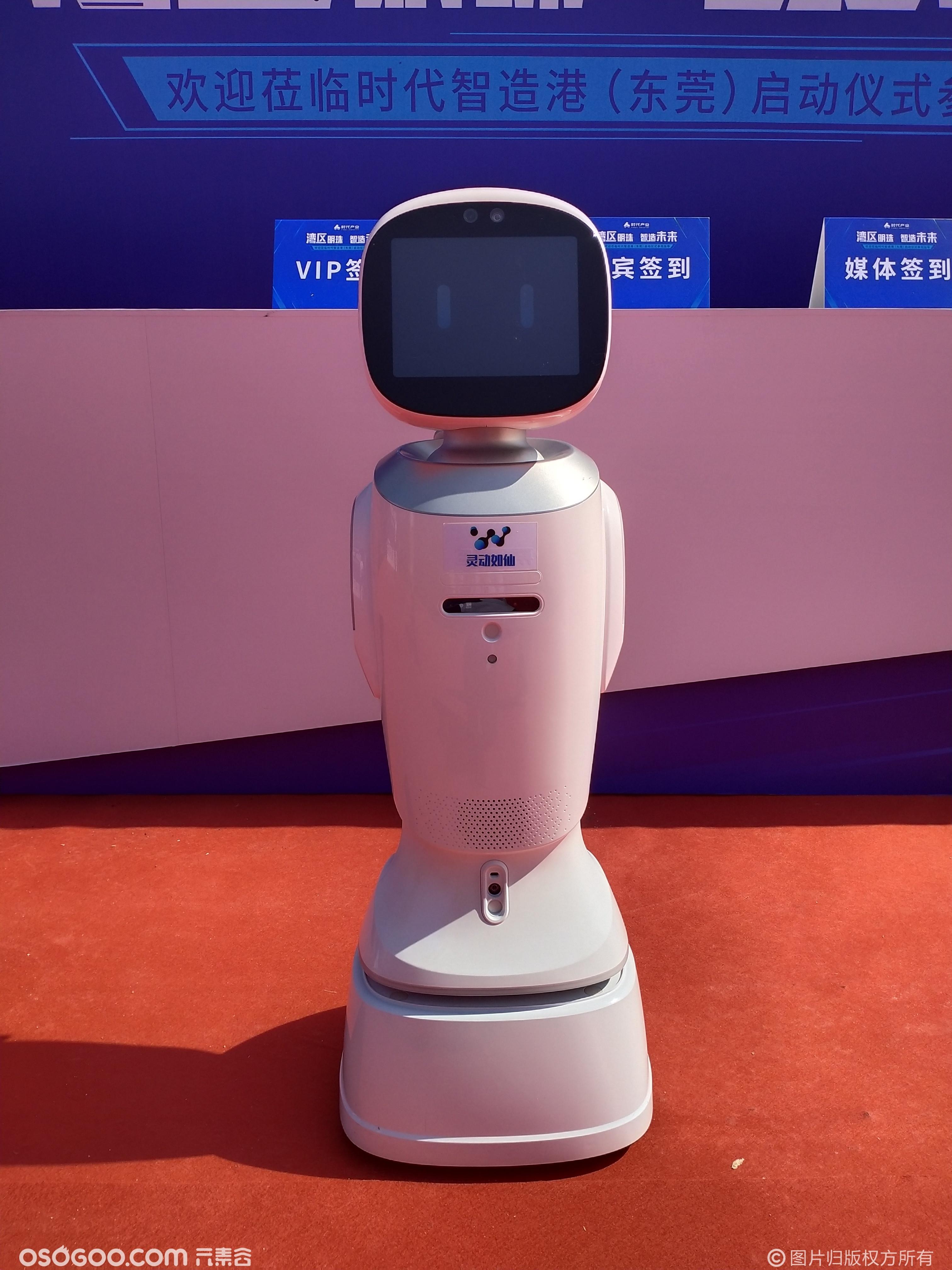 浙江杭州嘉兴宁波金华义乌湖州台州房地产嘉年华机器人租赁