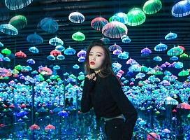 浩迈文化光影展