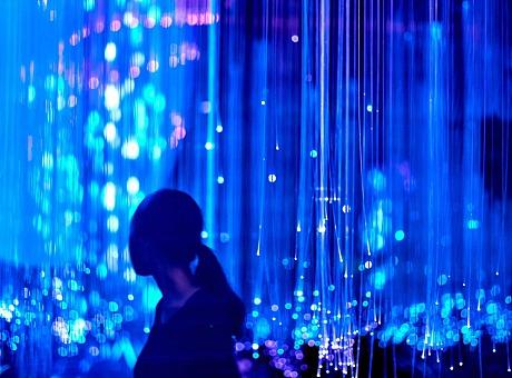 灯光的艺术《夜光丛林》