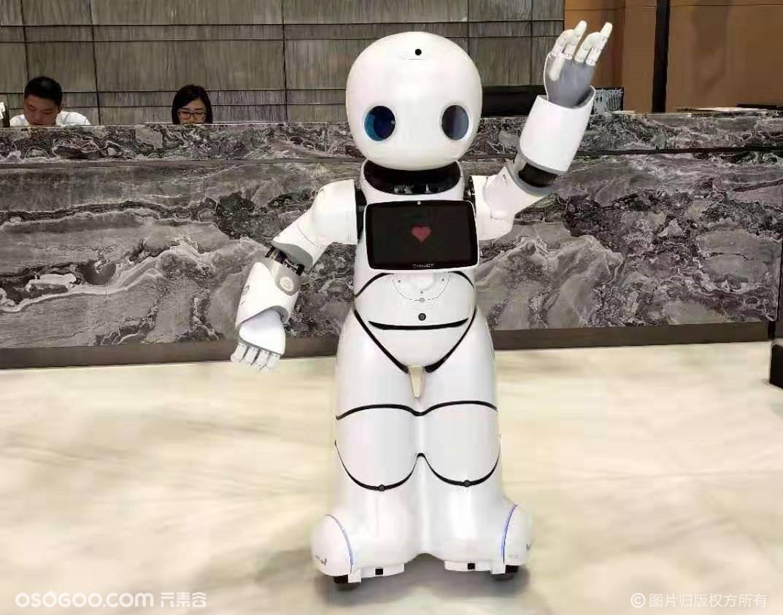 机器人租赁 格斗机器人售卖 出租
