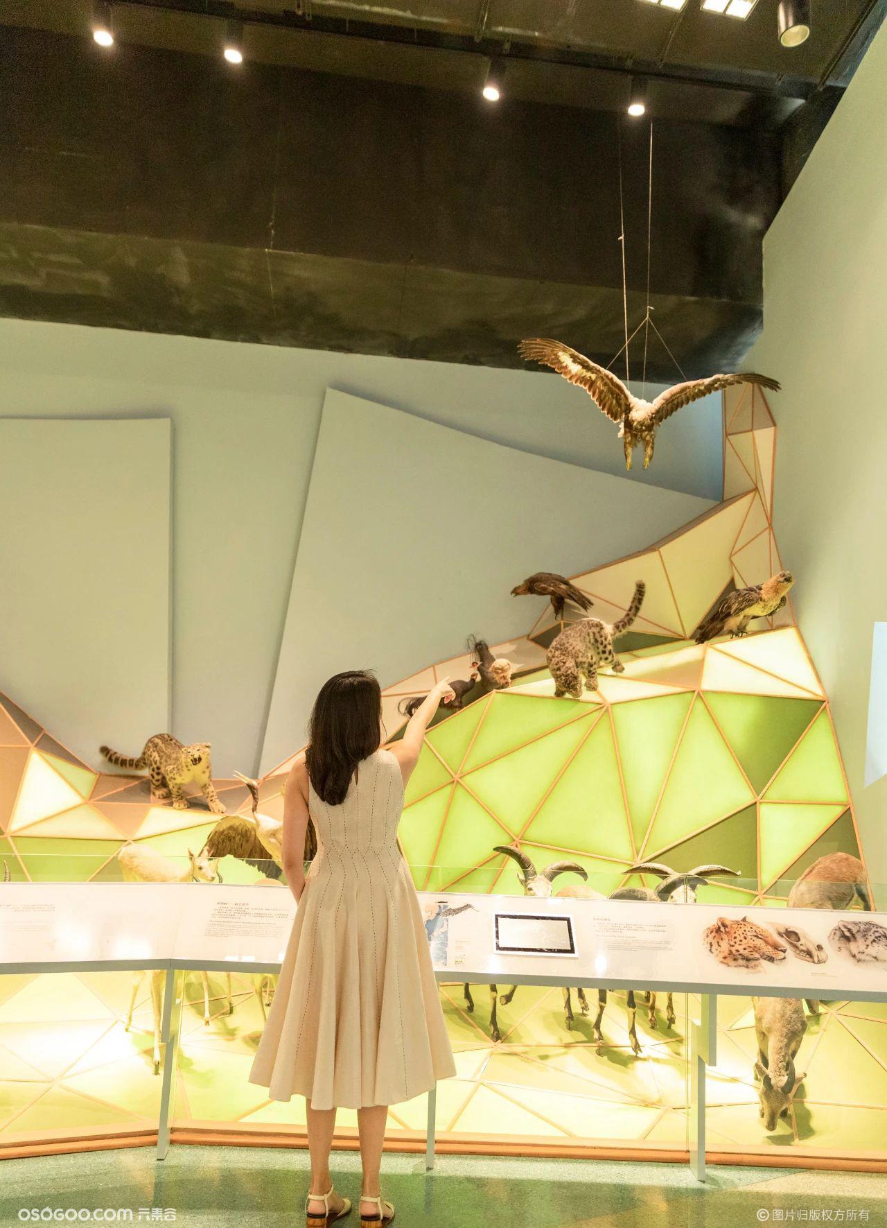 """欧莱雅""""多样星球博物馆之夜""""主题活动"""
