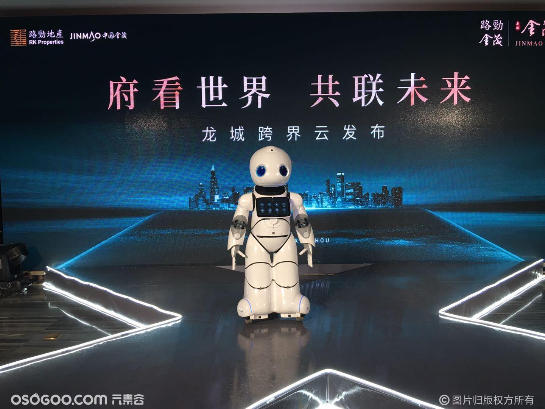 机器人租赁 主持迎宾机器人 科技展厅机器人