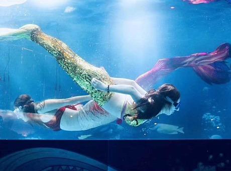 深蓝海洋美人鱼