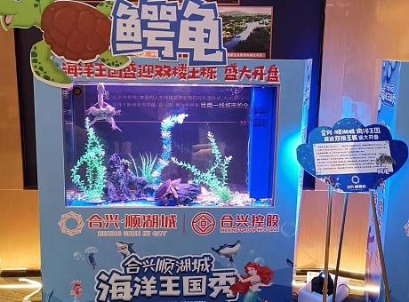 海洋动物展