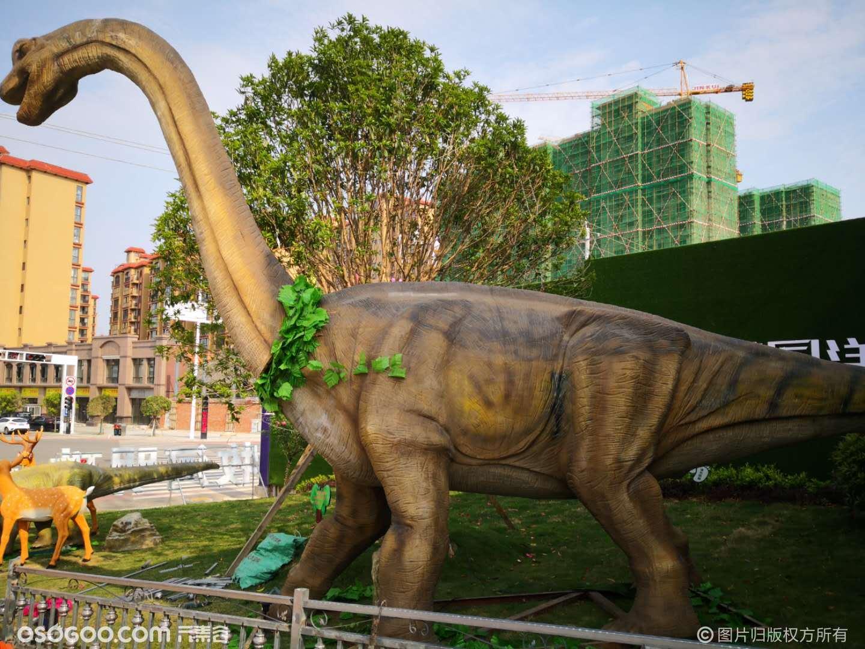大型仿真恐龙(有动作、声音)、跑跑龙、仿真恐龙服装等出租出售