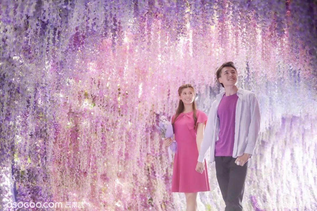 香港《紫·在北角汇》花夏祭