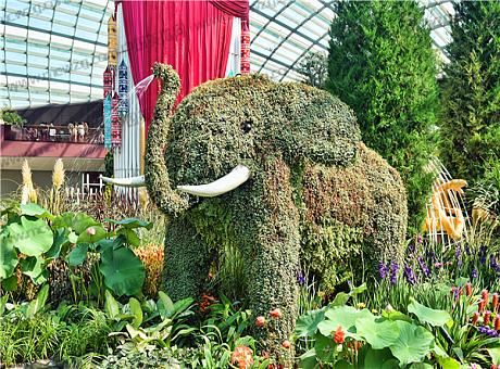 新加坡环保绿植的动物主题小景