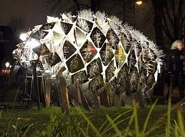 """""""绽放的幻象""""-阿姆斯特丹灯光节艺术装置"""