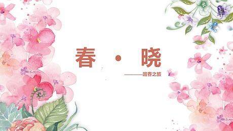 春晓-踏春之旅主题方案